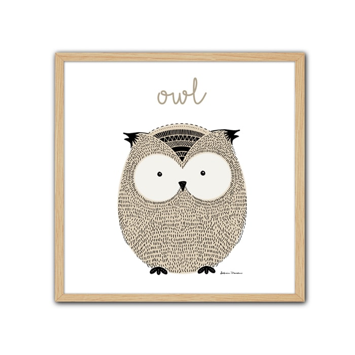 Cuadro Little Animal Owl