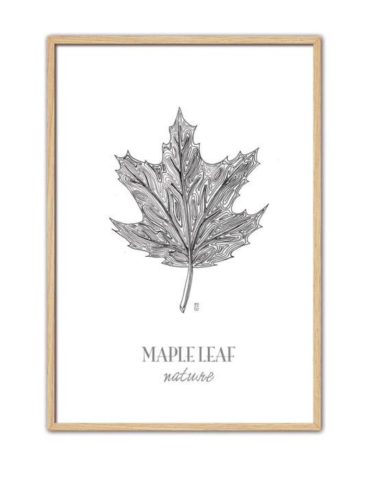 Maple Leaf CE45 NT-min