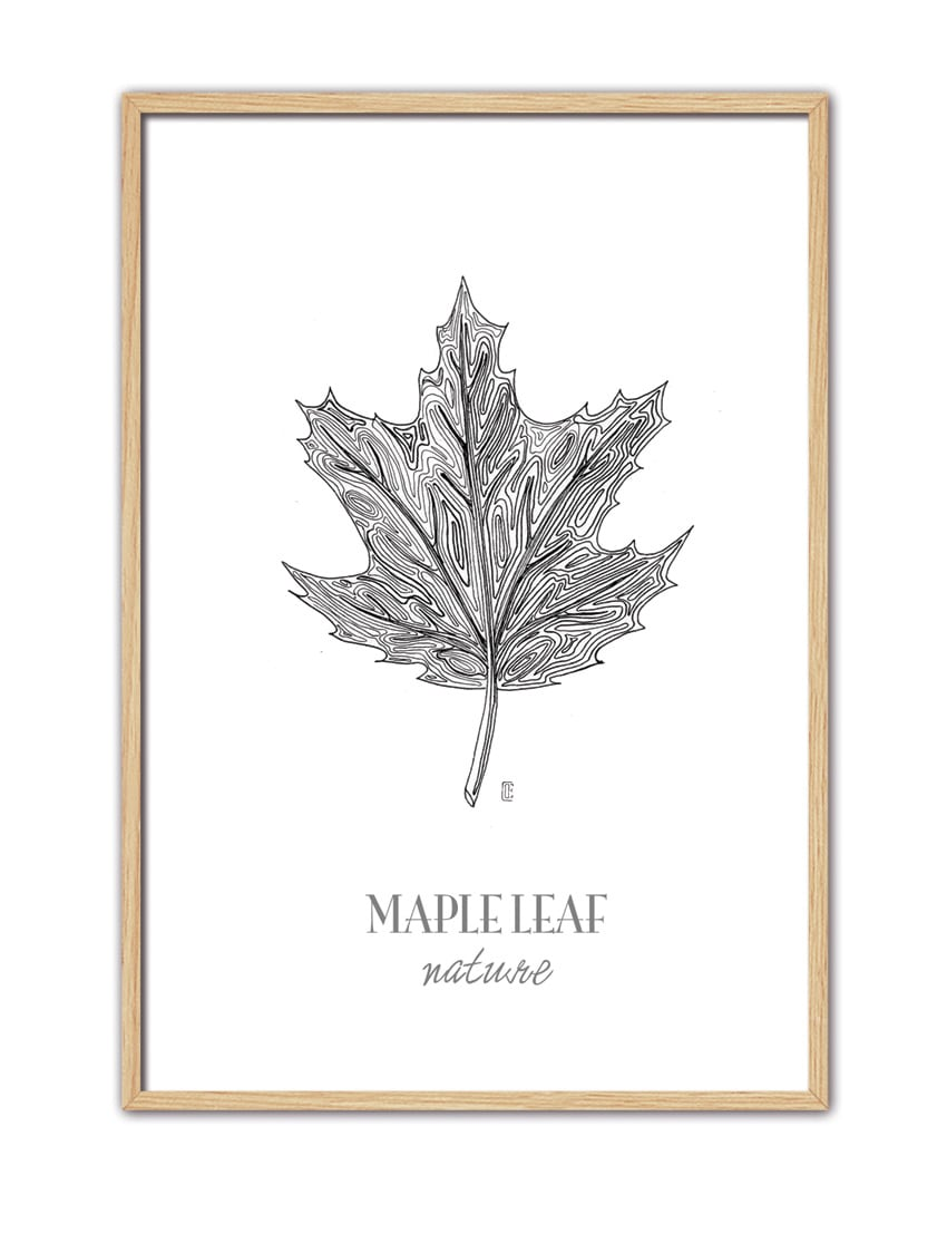 Maple Leaf CE45 NT-min