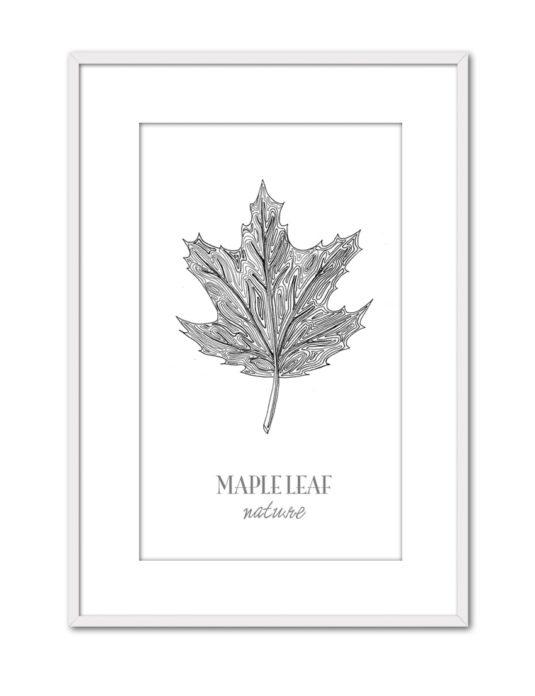 Maple Leaf CE45 PPT BL-min