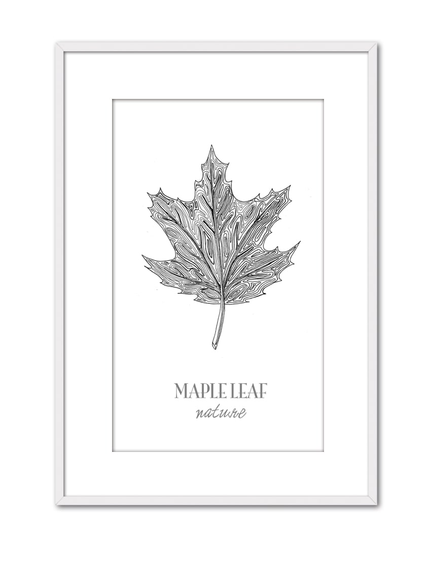 Maple Leaf CE45 PPT BL-min