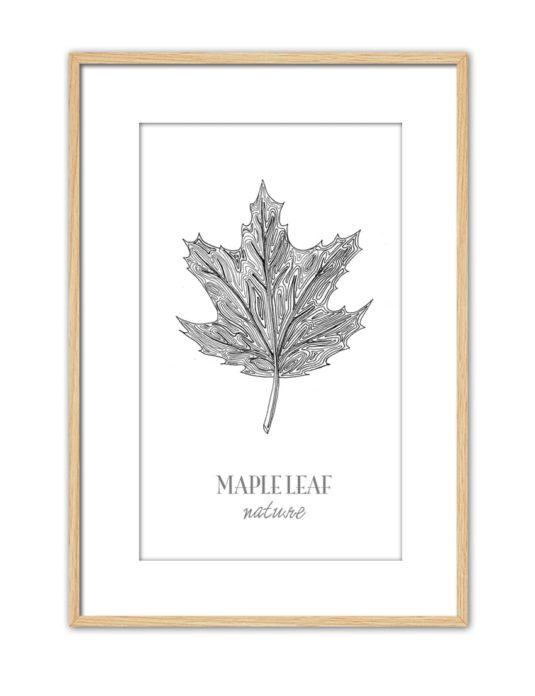 Maple Leaf CE45 PPT NT-min