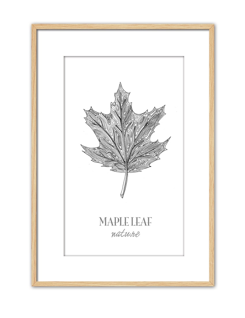 Maple Leaf CE45 PPT NT-min