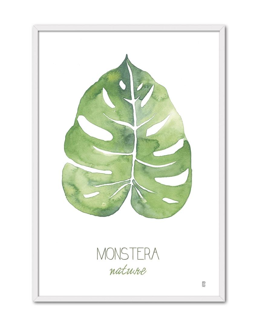 NATURE MONSTERA CE52 BL-min