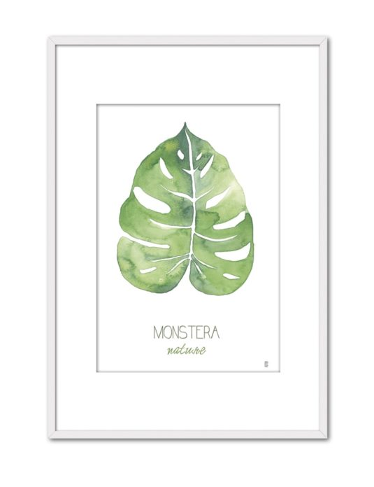 NATURE MONSTERA CE52 PPT BL-min