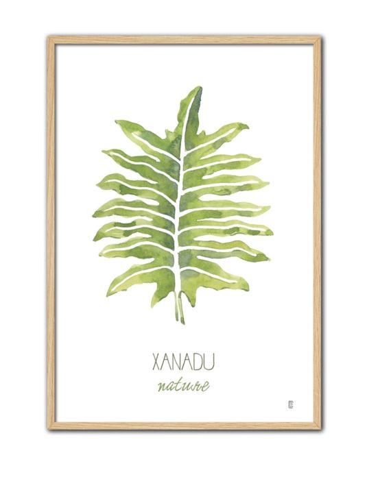 NATURE XANADU CE53 NT-min