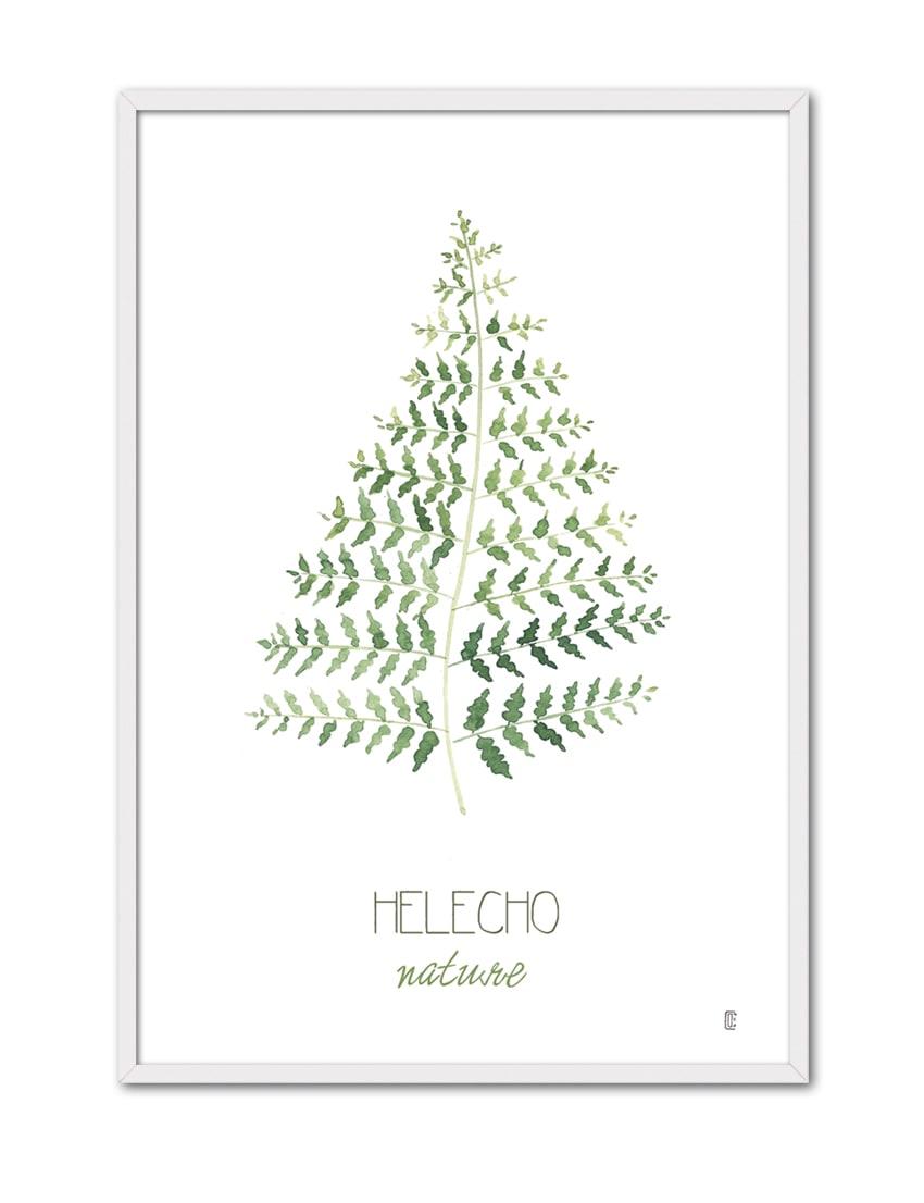 NATURE HELECHO CE50 BL-min