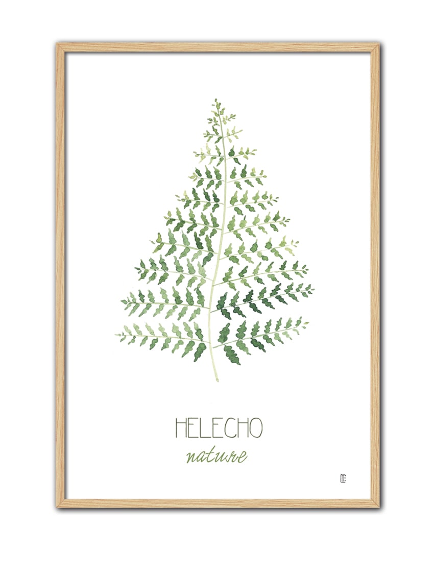 NATURE HELECHO CE50 NT-min