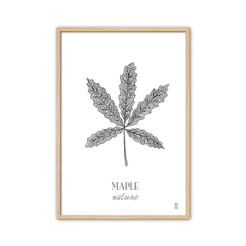 Cuadro Natura Maple Leaf