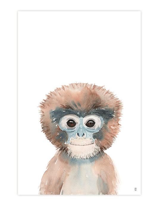 CE374 MONKEY 535x695 - Monkey Portrait